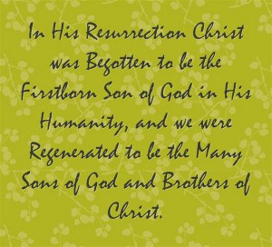 in-his-resurrection-christ-was-begotten-to-be-the-firstborn-son-of-god-in-his-humanity-and-we-were-regenerated-to-be-the-many-sons-of-god-a